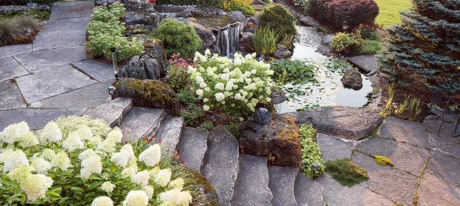 Tips for adding a water feature to a garden
